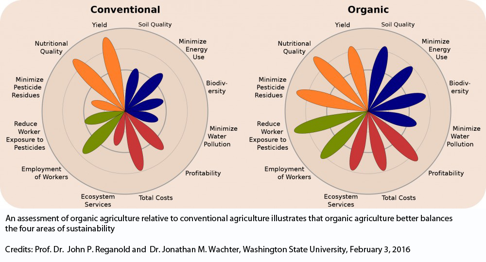 organic and inorganic evidence essay The differences between organic and unorganic food as we know, food is the most important thing in our lives home essays organic and inorganic food.